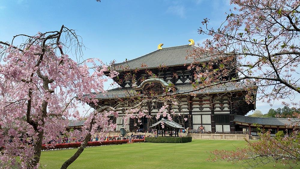 Nara-Zeit in Japan