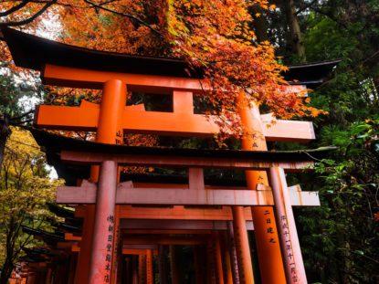 Shinto Religion - Fushimi Inari
